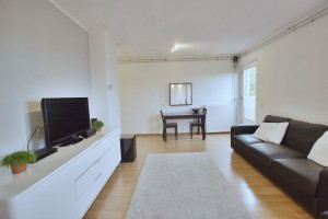 A+_Budget_Apartment_-_Living_Room-3