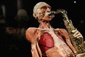 Body_Worlds_Amsterdam_-_saxofonist