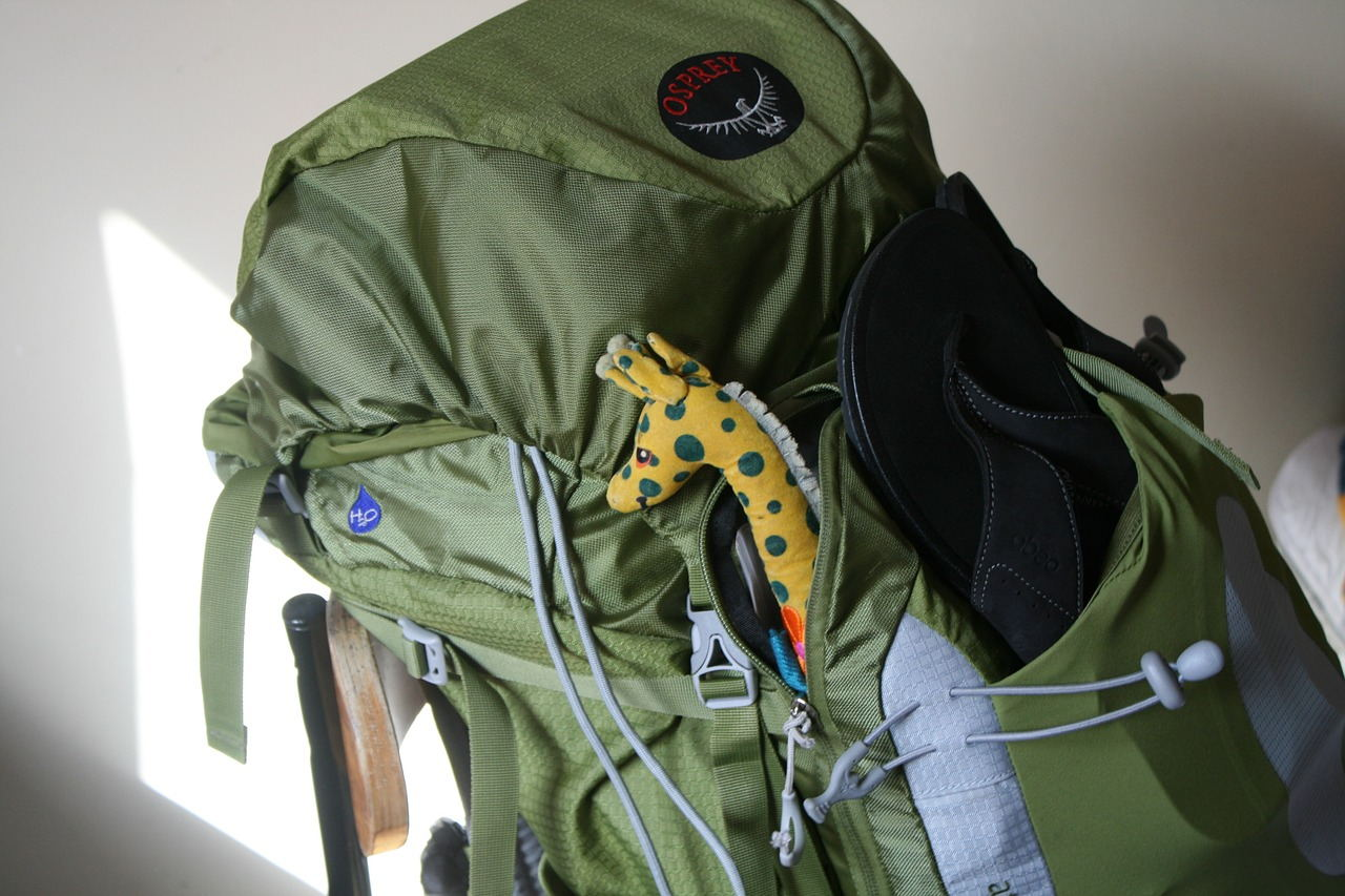 What Backpack Should You Buy