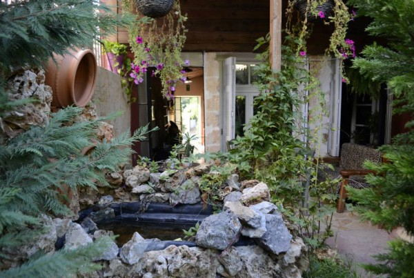 Chania_Hostel_-_Garden